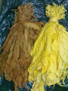liscie-tytoniu-virgi-105582670