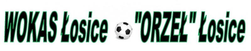 Mecz o Puchar Polski