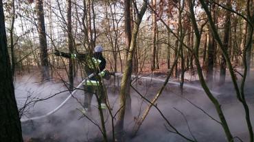 Pożar poszycia leśnego w Ruskowie