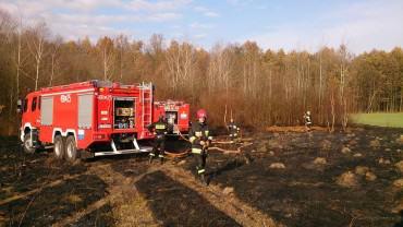 Kolejny pożar – czy mamy do czynienia z podpalaczem?