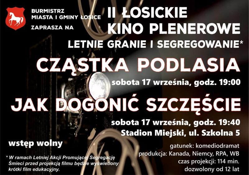 Ostatnie Łosickie Kino Plenerowe w tym sezonie