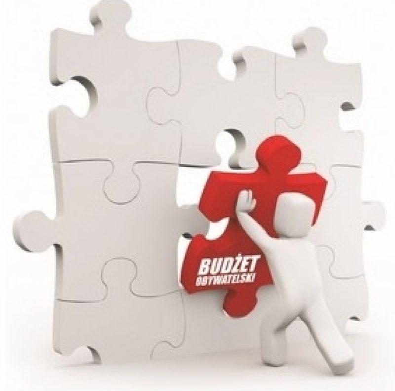 Jak wykorzystamy budżet obywatelski?