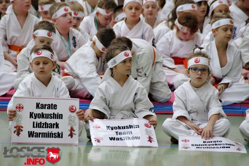 Święto Karate